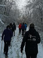 Winter-Nordic Walking im Januar